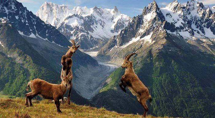 कश्मीर जन्नत है तो गिलगित-बाल्टिस्तान भी किसी 'चमत्कार' से कम नहीं!