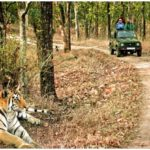 DOS and DON'TS in Corbett National Park, Safety Measures at Corbett, JIM CORBETT NATIONAL PARK Travel Guide, Corbett Tiger Reserve, Jim Corbett National Park India