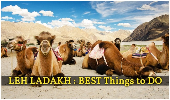 Magnetic Hill, Mountain Biking, Things to do in Leh Ladakh, River Rafting in Zanskar River, Pangong Tso Lake Ladakh, Hall of Fame Leh Ladakh