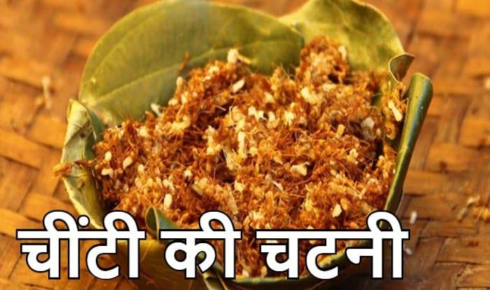 Ant Sauce in Bastar, Red Ant Sauce, Red Ant Sauce Benefits in Bastar