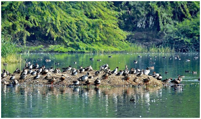 must visit Best 6 lake in Gurgaon