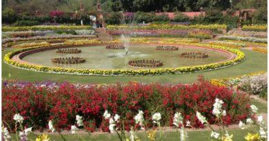5 Places to enjoy Delhi's Natural Beauty