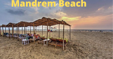 Find out why Mandrem Beach is special among tourists in Goa