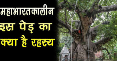 Parijat Tree - unknown facts relates to mahabharat time tree