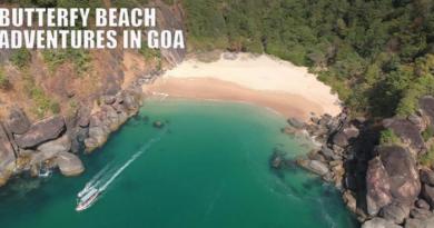 Butterfly Beach Palolem Canacona South Goa District Goa