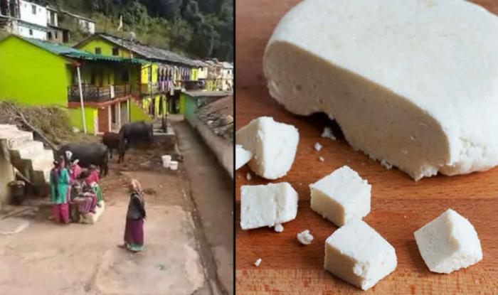 uttarakhand beli village paneer village