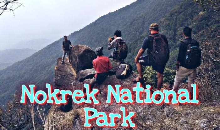Nokrek National Park in Meghalaya is famous for its beauty