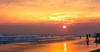 Golden beach in Puri gets 'blue flag', know what is blue flag