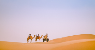 Want to take a camel safari, come and visit Sam Sand Dunes