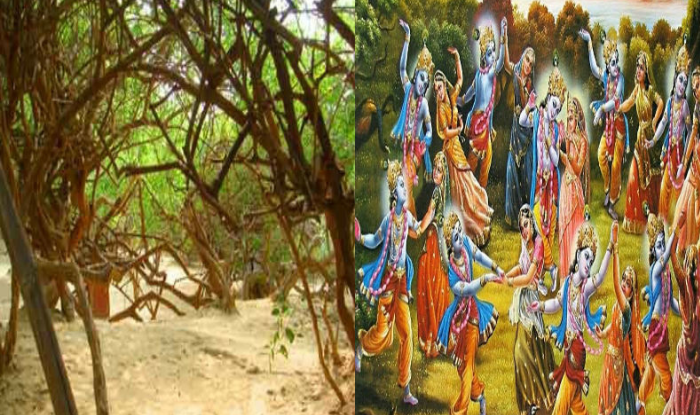 Nidhivan of Vrindavan, where Kanhaiya still performs Rasleela, this happens