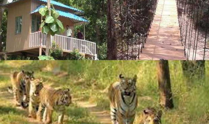 Valmikinagr Tour : Valmikinagr buzzed with tourists