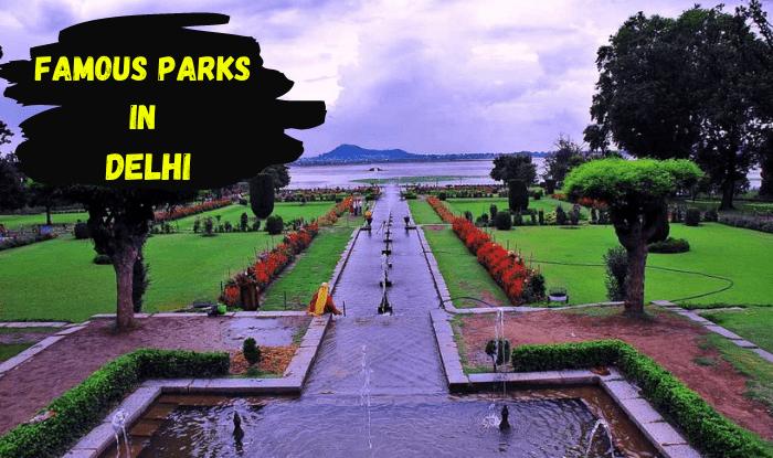 आज हम आपको दिल्ली के ऐसे पार्क ( Best Parks and Gardens of Delhi ) के बारे में बताएंगे जहां आप परिवार, दोस्तों के साथ पिकनिक मना सकते हैं... (File Photo)